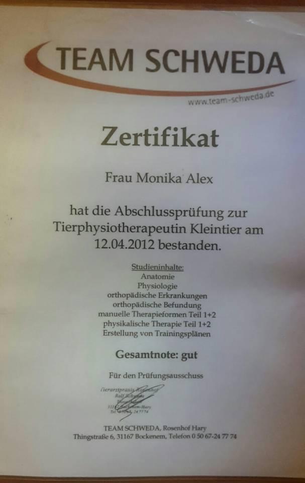 Nett Cma Aama Prüfung Der Praxis Anatomie Und Physiologie ...