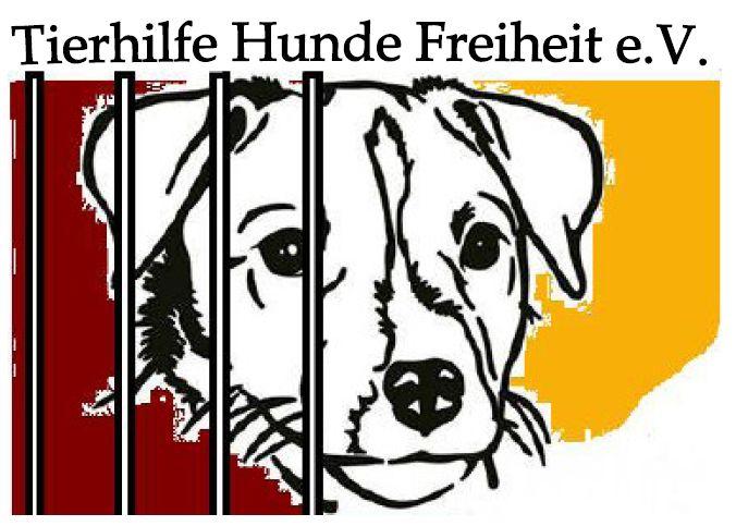 Tierhilfe Hunde Freiheit