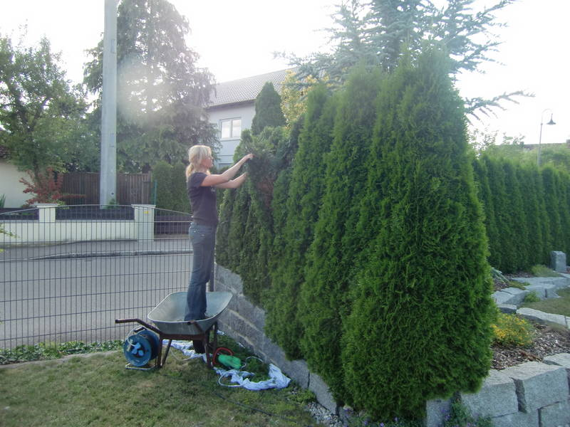 alexandra schmid - gartengestaltung & -pflege - burgau ______, Garten ideen