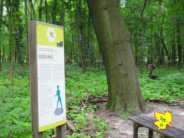 """Landschaftspark Herzberge """"Die Erdung"""" by S.J.M."""