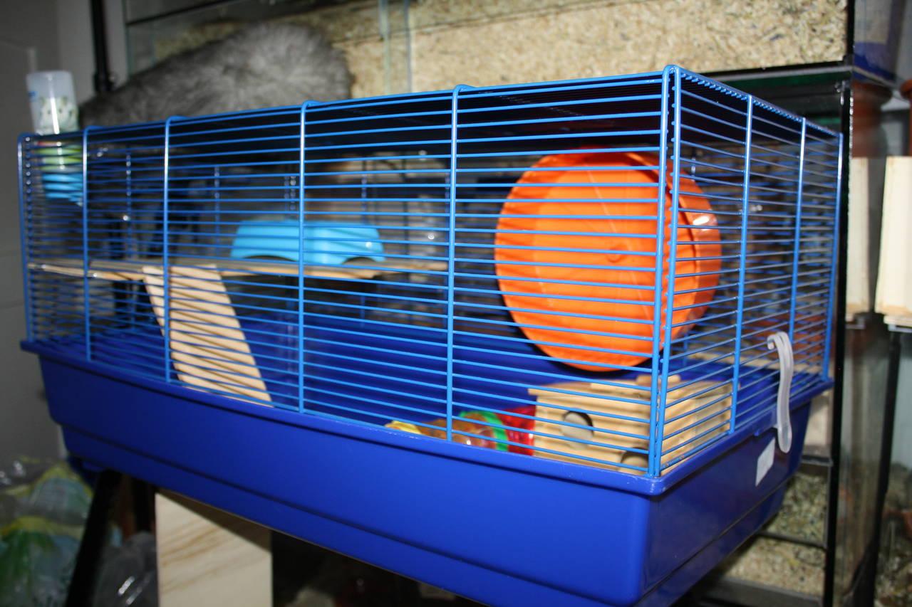 Hamsterzucht München tierschutzwidriger Käfig und Zubehör