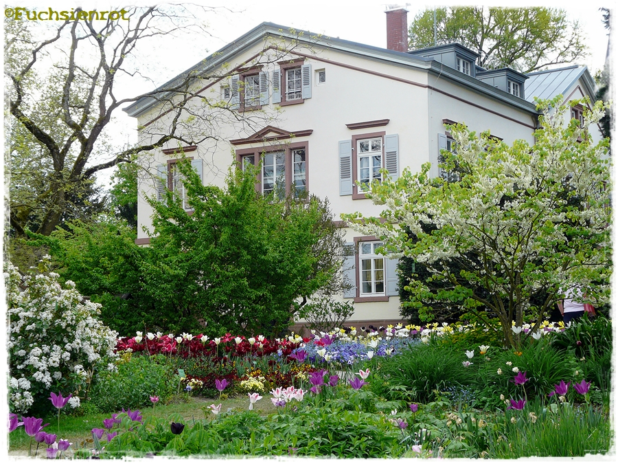 Frühling im Hermannshof