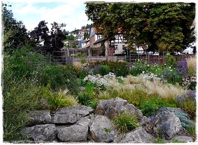 Garten Kölsch in Büdingen