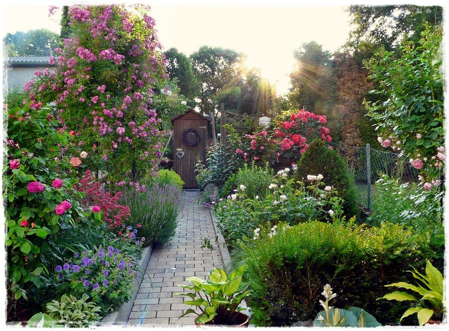 Weg zum Gartenschrank