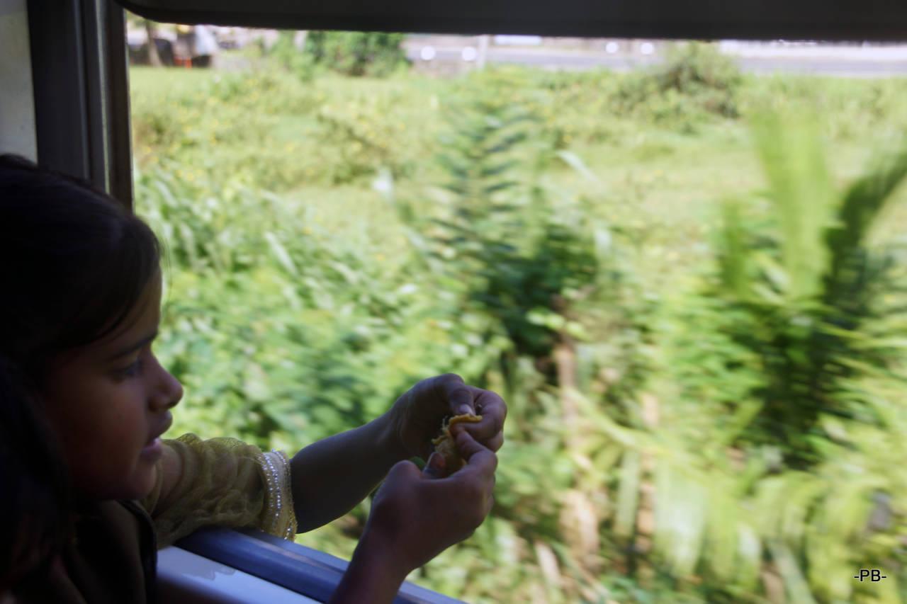 Unterwegs mit dem Zug im Hochland von Sri Lanka