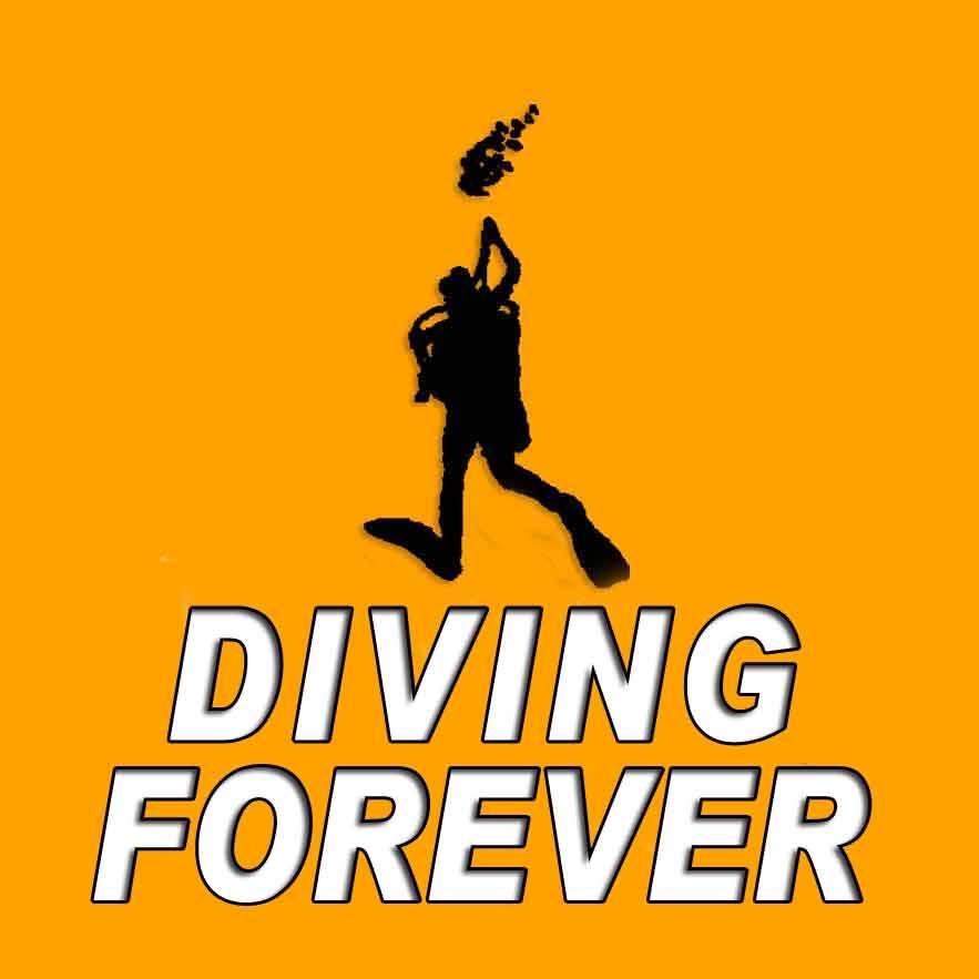 Logo Diving Forever Deutsche Tauchschule