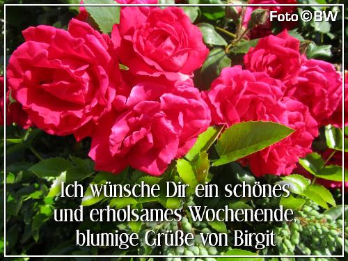 An den Beitrag angehängtes Bild: https://file2.hpage.com/013293/99/bilder/schoenes_wochenende-lg_birgit_001.png