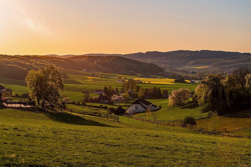 Rapsblüte am Wiehengebirge 1. Platz Fotowettbewerb Volksbank Lübbecker Land 2020