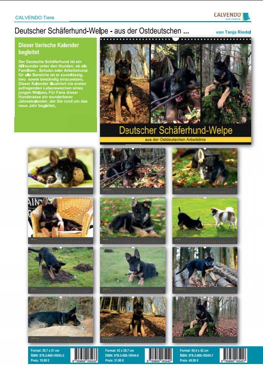Deutscher Schäferhund Kalender