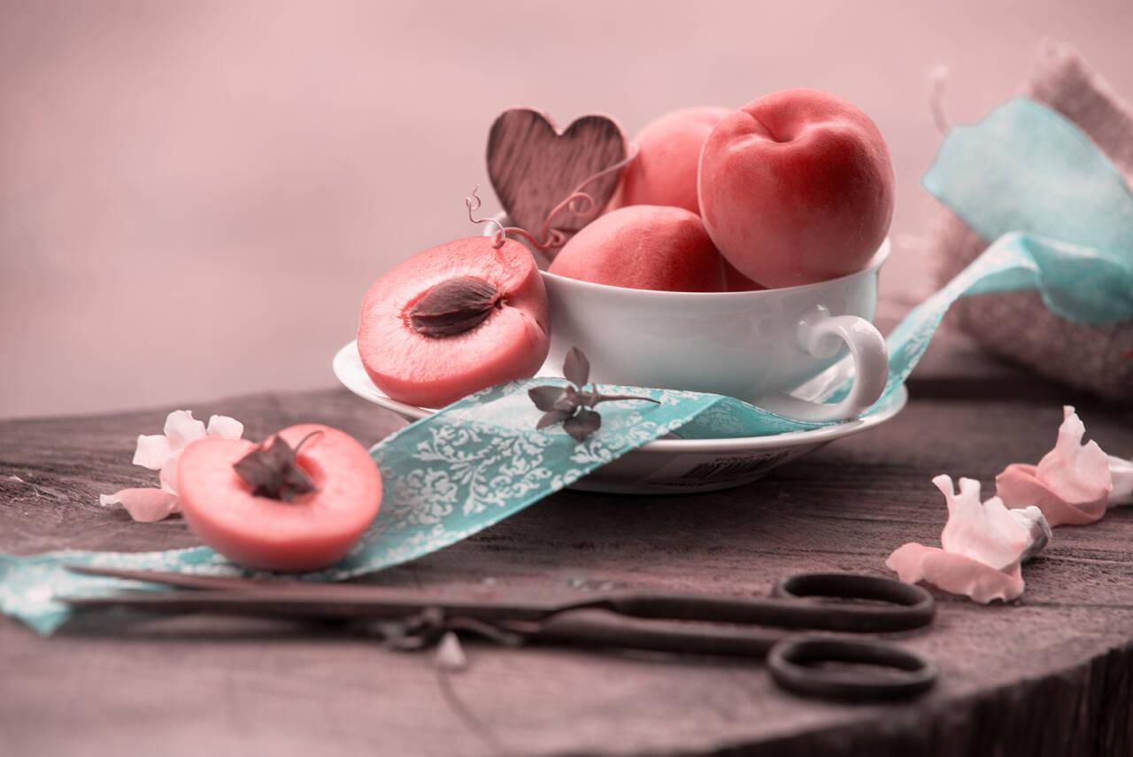 Frische Aprikosen, im trendigen pastell Tönen, blau und Aprikot