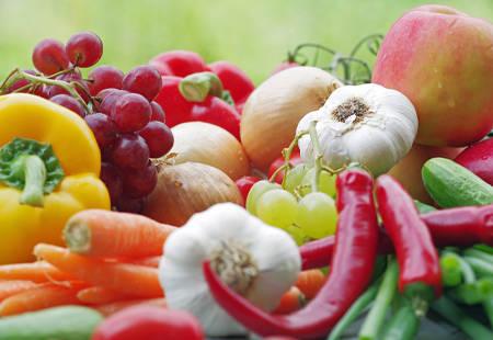 Frisches gesundes Gemüse und Früchte direkt aus dem Garten