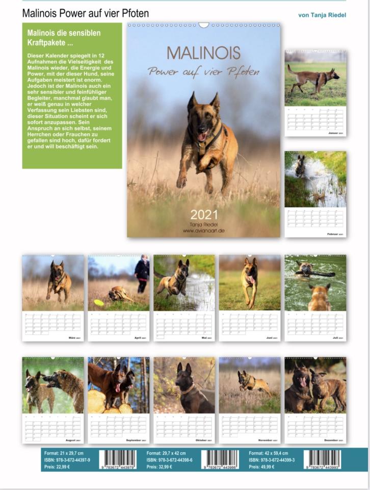 Malinois Kalender mit Planer für 2021. Diese Hunde sind Power und Kraftpakete. Jedoch ist diese Hunderasse sehr anhänglich und Menschen bezogen.