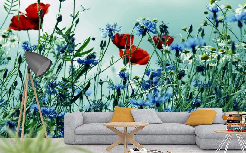 Mohnblumen Fototapete für ein dekoratives Zuhause