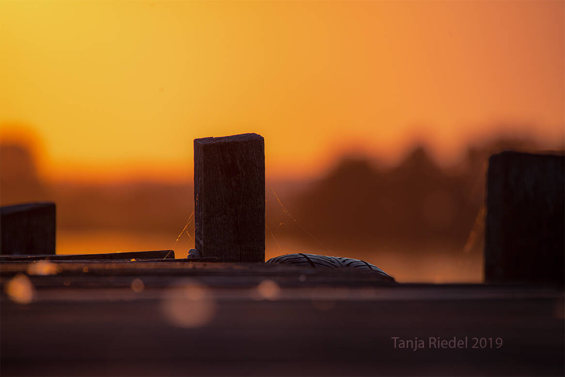 #Abendsonne am #Bootssteg #wunderbare #Momente der #Natur
