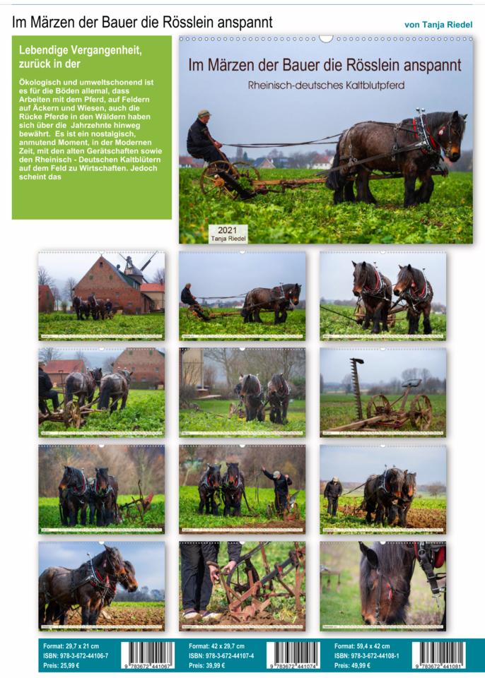 Im Märzen der Bauer die Rösslein anspannt, Lebendige Vergangenheit, zurück in der Zukunft, öologisch und umweltschonend ist es für den Boden allemal, das Arbeiten mit dem Pferd, auf Feldern, Äckern und Wiesen. auch die Rücke Pferde in den Wäldern haben sich über Jahrzehnte bewährt. Nostalgisch anmutender Moment diese Pferde mit Arbeiten zu sehen.