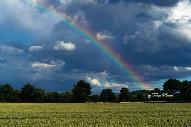 Regenbogen Land
