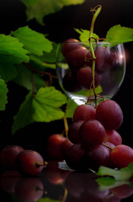 Weintrauben Genuss Food Stillleben