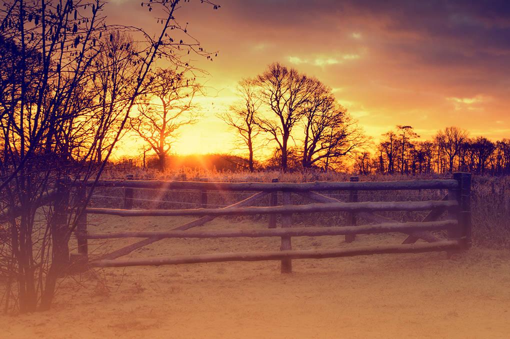 Februar Wintermorgen