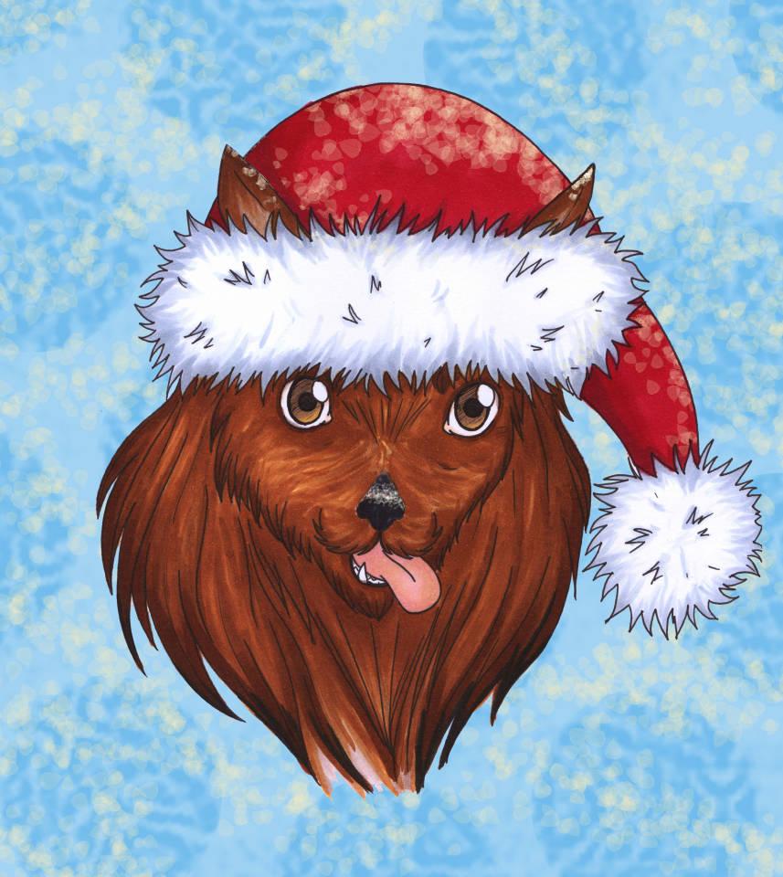 Lesnoys Australian Terrier, Hunde, Hund, Breeder, Terrier, Weihnachten