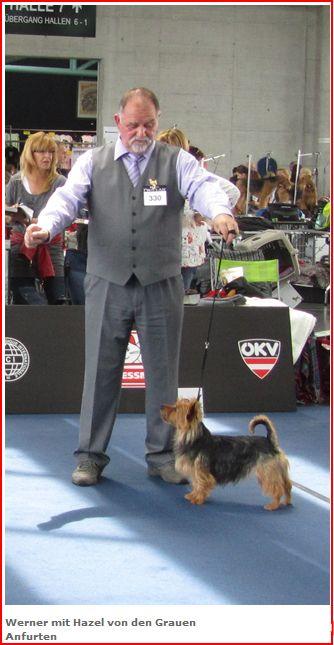 Herr van de Sand mit Australian Terrier Lesnoy´s Hazel (von den grauen Anfurten)