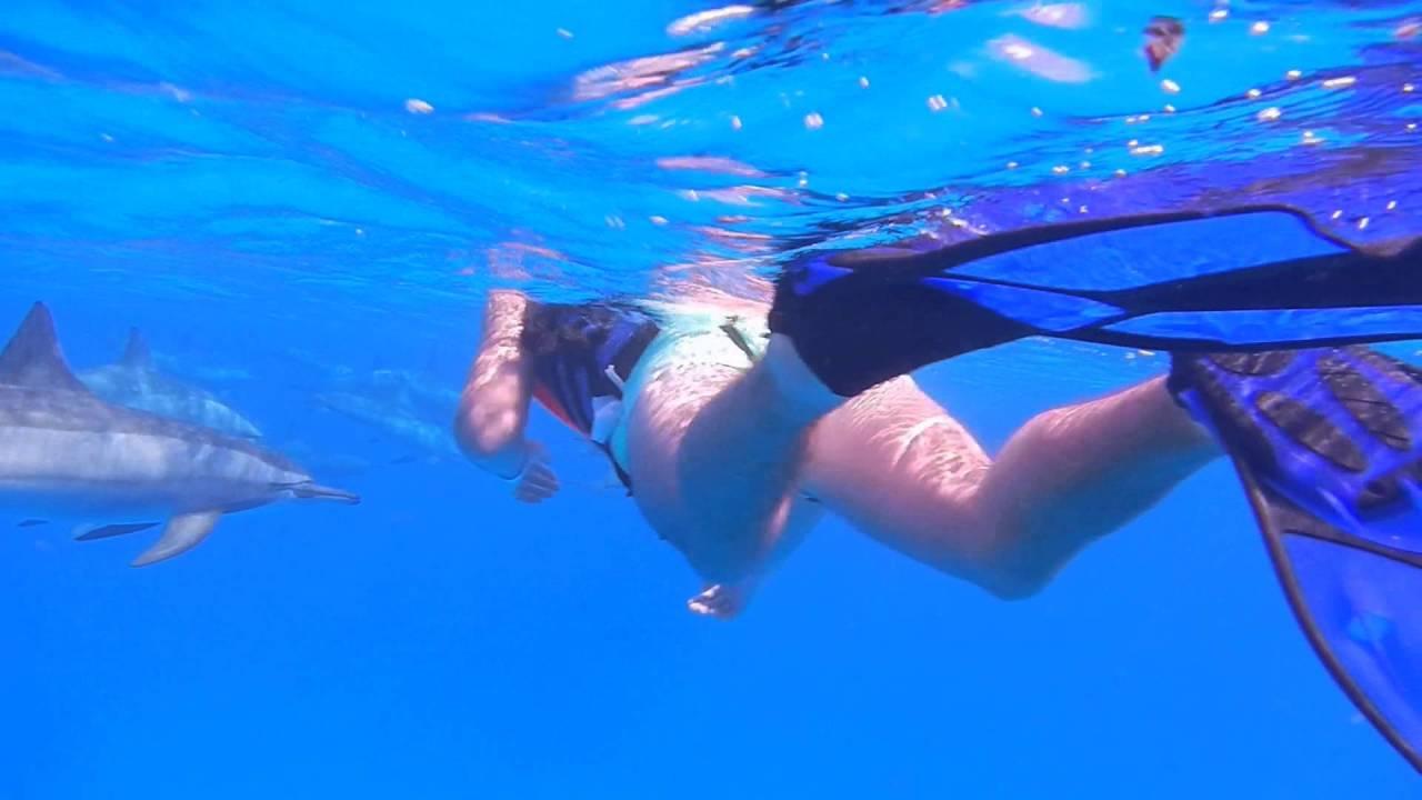 Schwimmen mit Delfine in Hurghada