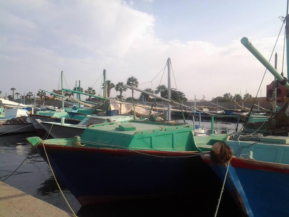 Ausflüge in Hurghada City Tour Fischmarkt