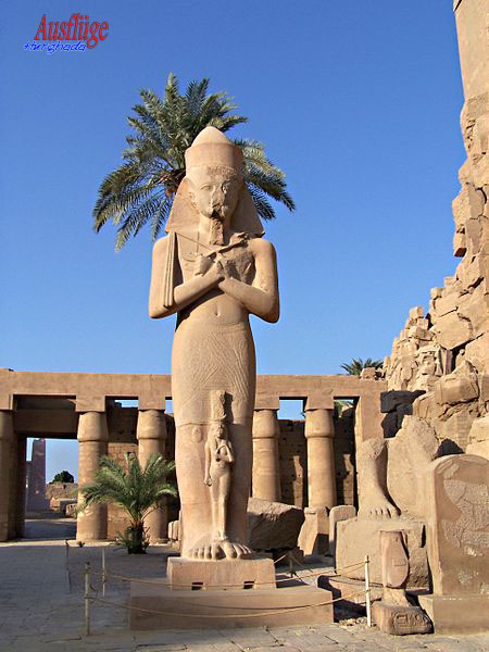 Tagesausflug Luxor