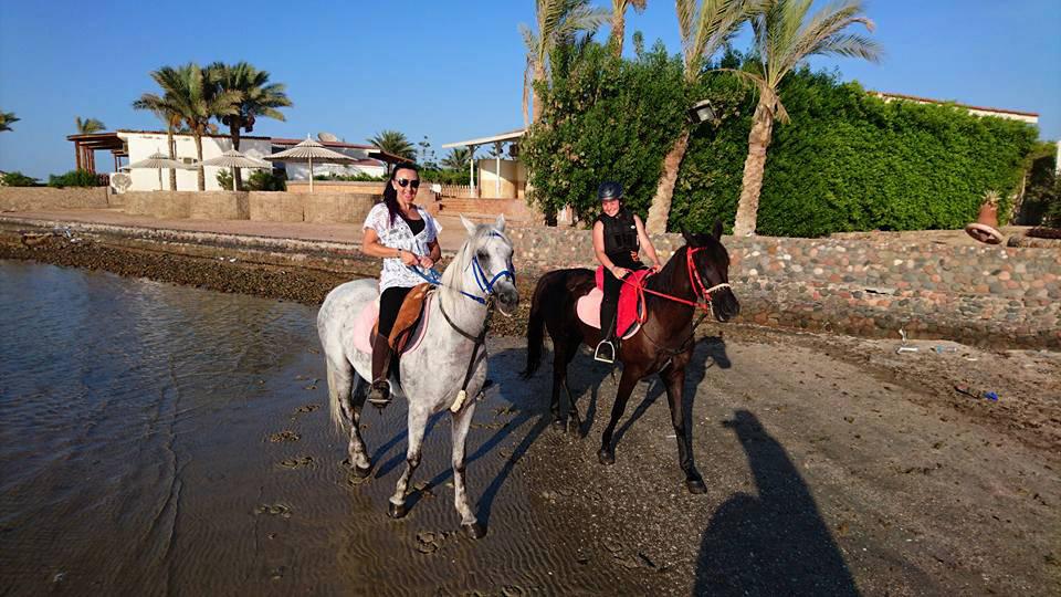 Reitausflug mit Pferden in Hurghada