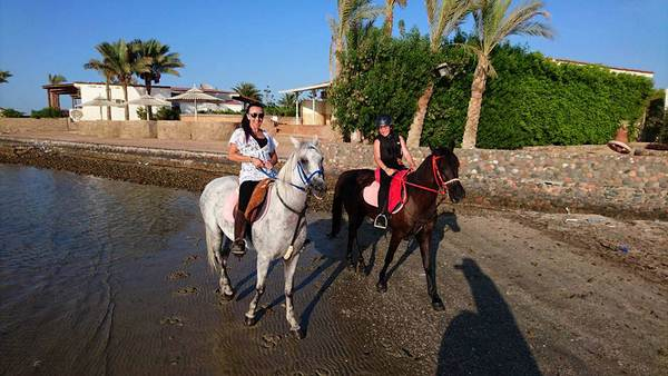 Reitausflug in Hurghada