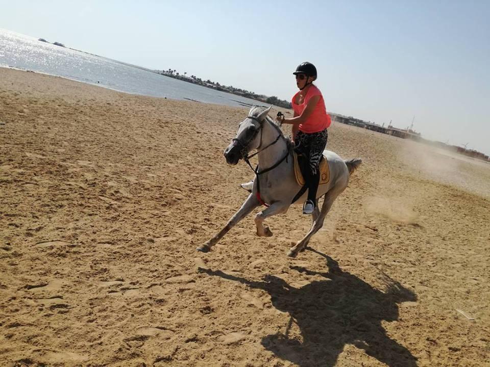Reiten Hurghada
