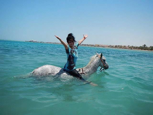 Reiten im Meer in Hurghada