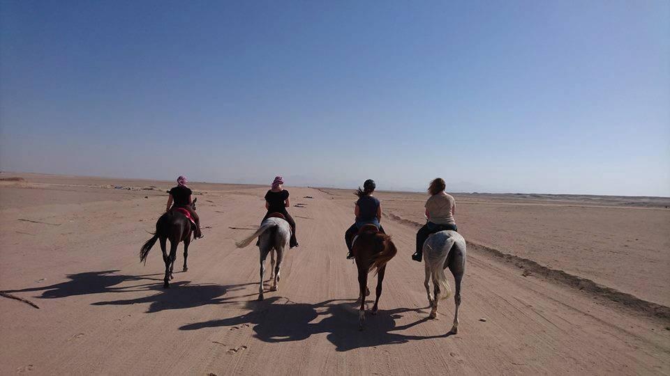 Reiten in der Wüste in Hurghada