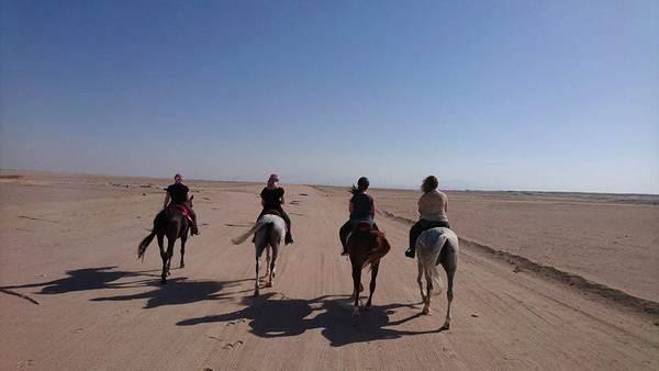 Reiten in der Wueste Hurghada