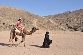 Kamelreiten bei den Beduinen