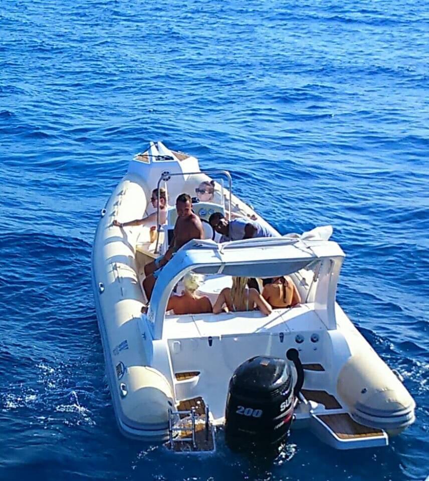 Ausflug zu den Delfinen mit Speedboot