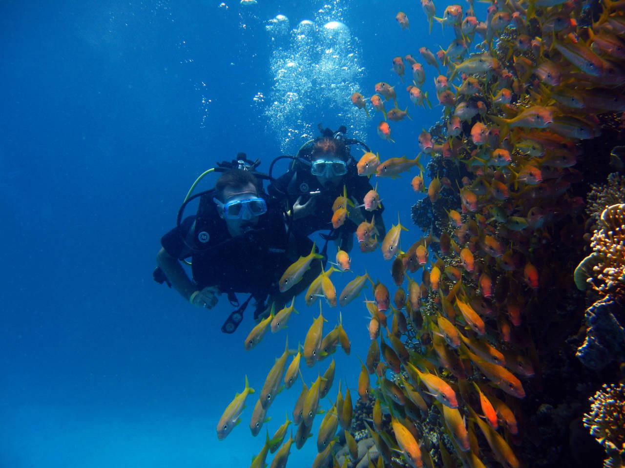 Schnupperkurs Tauchen Hurghada