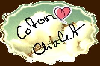 Coton de Tulear / Zwinger Coton Chalet