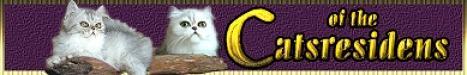 Willkommen bei der Perserkatzenzucht of the Catsresidens. Katzen haben schon immer Emotionen in uns ausgelöst. Eine Perserkatze besticht durch ihr ruhiges Wesen, ist sehr zugänglich und verschmust.An einer Perserkatze werden Sie viel Freude haben..