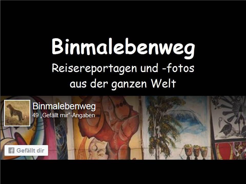 Zue Mutter aller Homepages: www.binmalebenweg.de