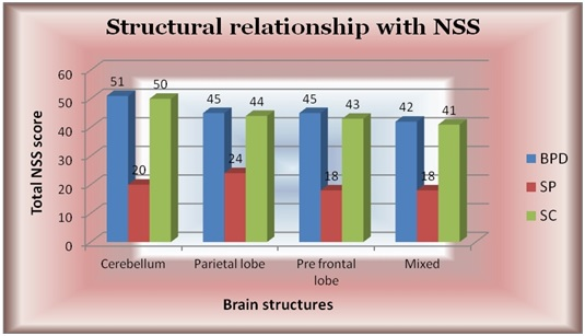 structure_nss
