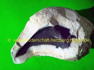 Feuersteinknolle - Bruch - Foto der Bruderschaft Herzberg