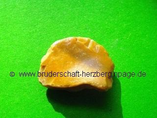 gelber Bandjaspis - Foto der Bruderschaft Herzberg