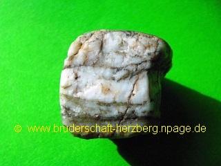 Zebrajaspis - Foto der Bruderschaft Herzberg