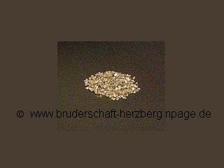 Iridium - Foto der Bruderschaft Herzberg