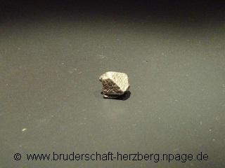 Platin - Foto von der Bruderschaft Herzberg