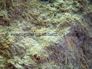 Sandstein - vergrößert - Foto der Bruderschaft Herzberg