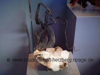 Silber - Foto von der Bruderschaft Herzberg