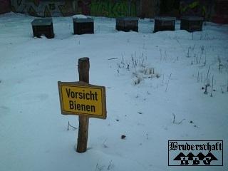 Schild - Vorsicht Bienen ( im Winter ?); Foto der Bruderschaft Herzberg