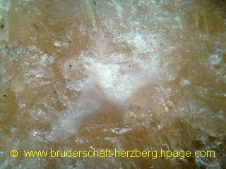 Himalaya-Salz - Foto der Bruderschaft Herzberg