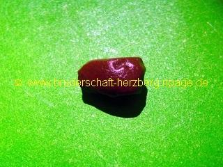 dunkel-brauner Jaspis - Foto der Bruderschaft Herzberg